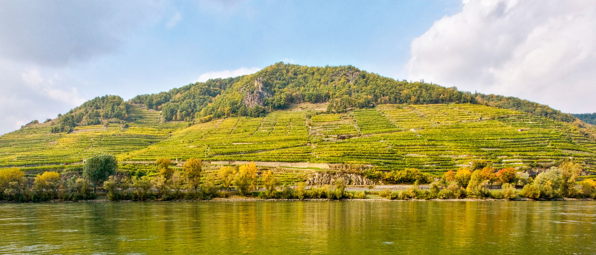 Weingut Holzapfel Rieden Donau Wachau Weißenkirchen